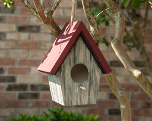 Birdhouse Painted